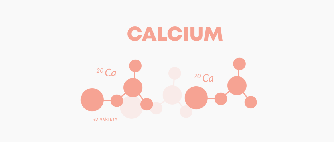 t00003 what does calcium do to your body 01 1