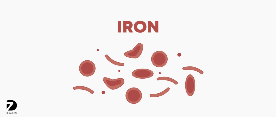 t00005 what does iron do to your body