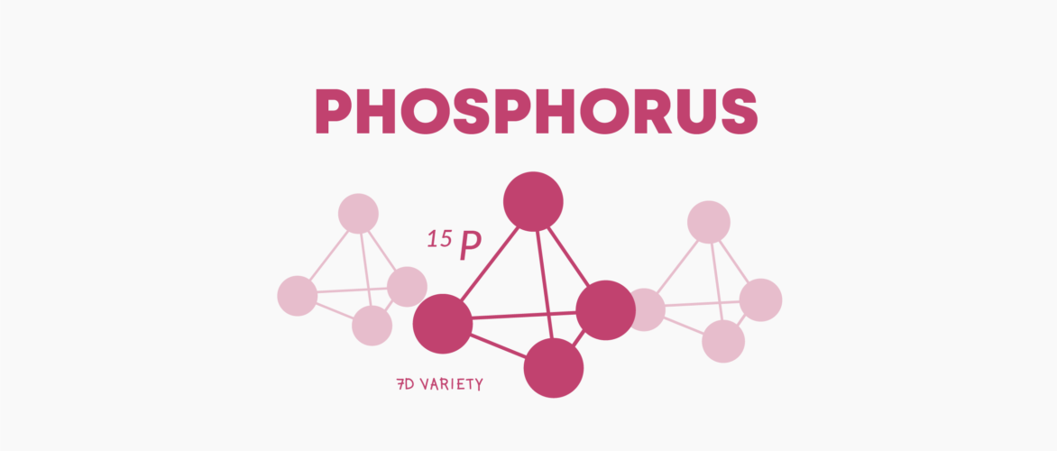 t0010 what does phosphorus do to your body 1